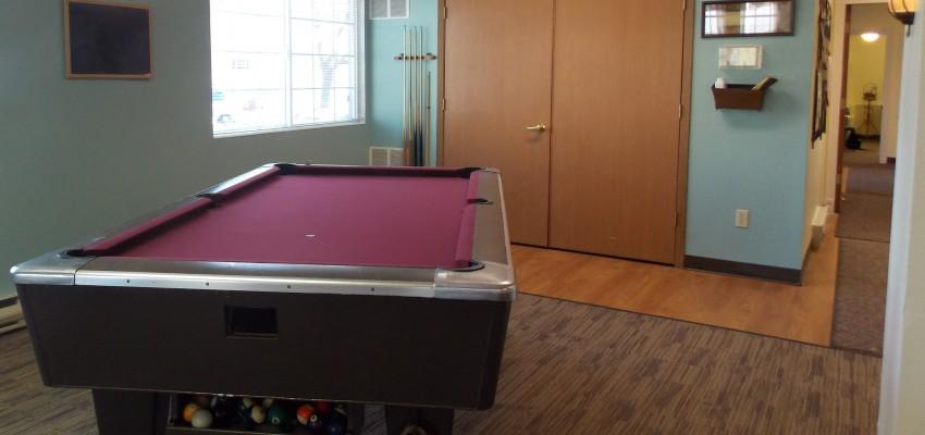 Pool_Table_Fun_Senior_Activities